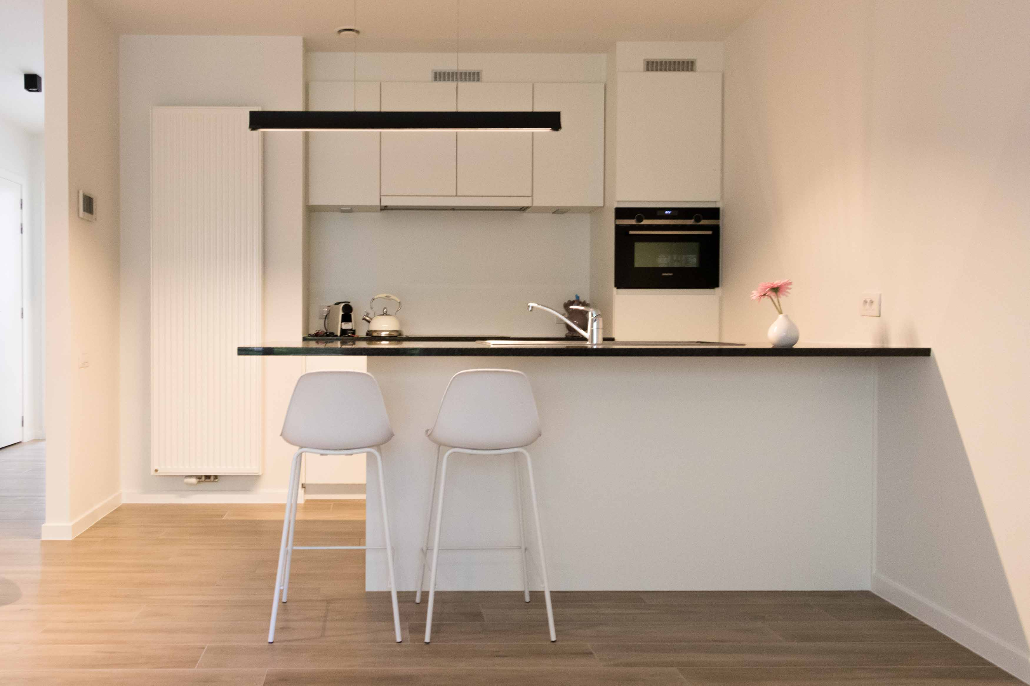 furnished business apartment A001