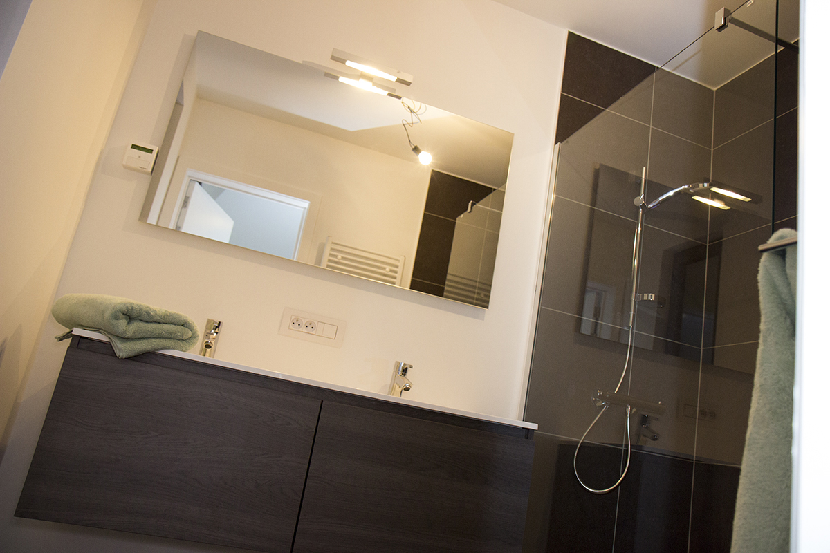 furnished business apartment A102