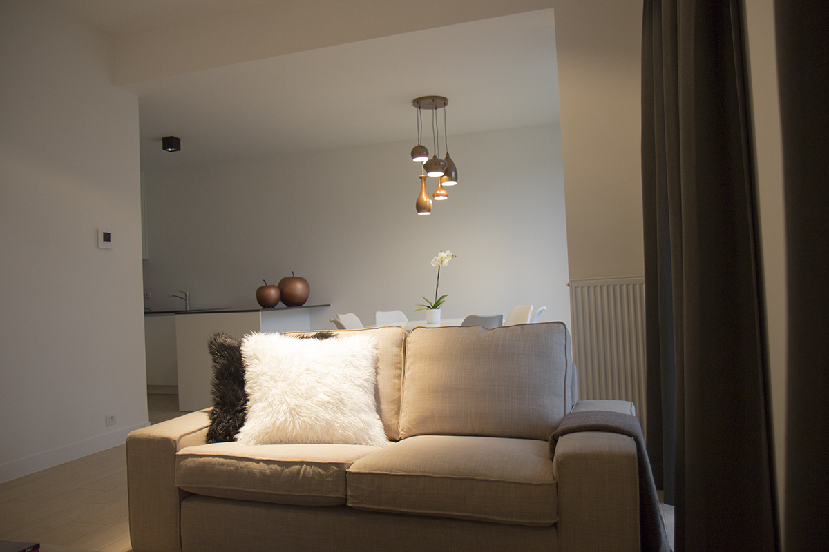 furnished business apartment B001
