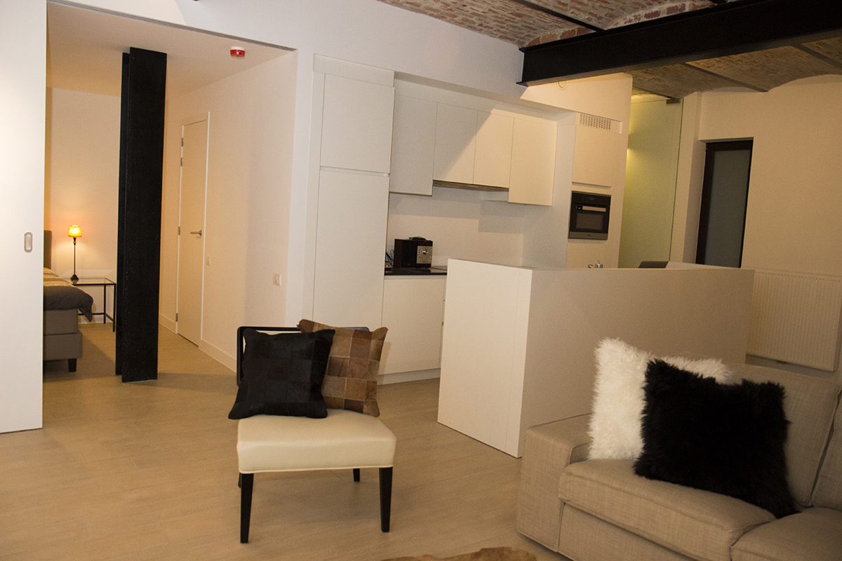 furnished business loft C001