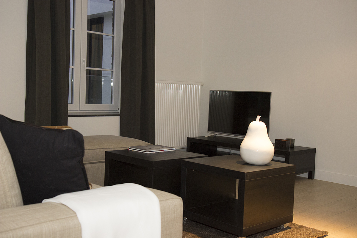 furnished business apartment D101